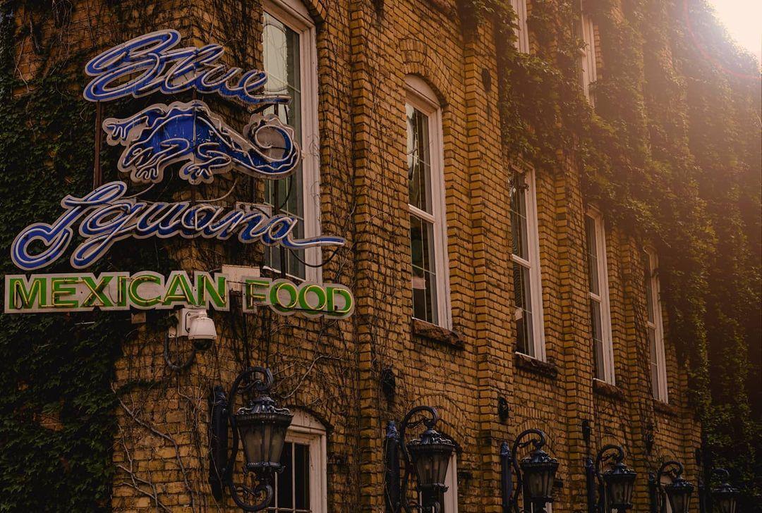 blue iguana sign
