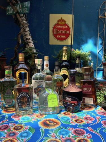 iguana-tequilas-773x1030